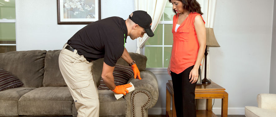 Monroeville, PA carpet upholstery cleaning
