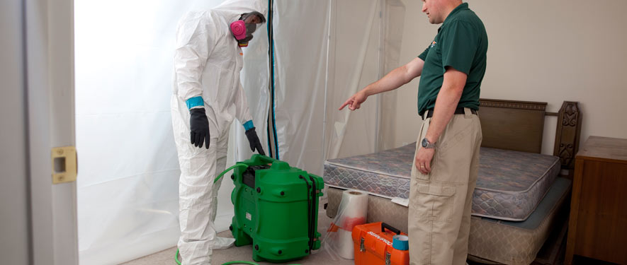Monroeville, PA mold removal process